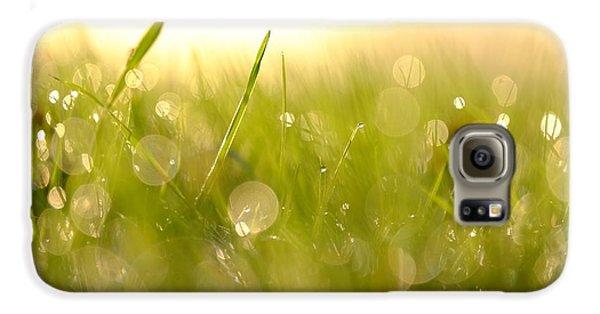 Morning Dew Galaxy S6 Case
