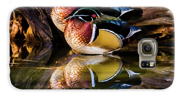 Morning Reflections - Wood Ducks Galaxy S6 Case