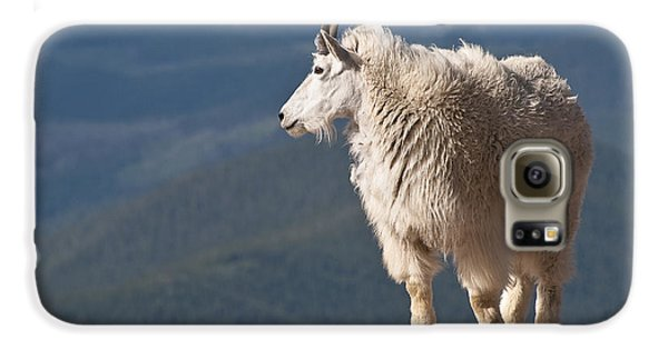Galaxy S6 Case featuring the photograph Mountain Goat by Gary Lengyel