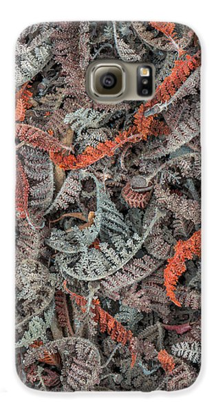 Mountain Misery Leaf Litter Galaxy S6 Case