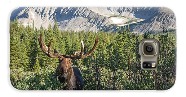 Mountain Moose Galaxy S6 Case