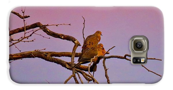 Mourning Doves Galaxy S6 Case