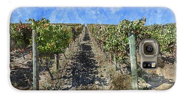 Napa Valley Vineyard - Rows Of Grapes Galaxy S6 Case