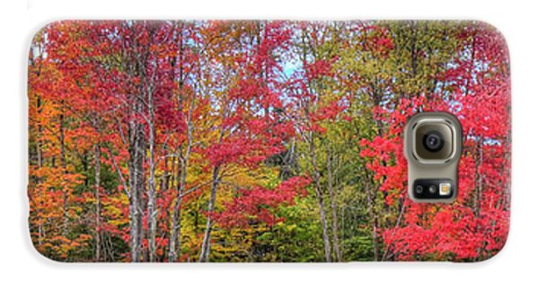 Galaxy S6 Case featuring the photograph Natures Autumn Palette by David Patterson