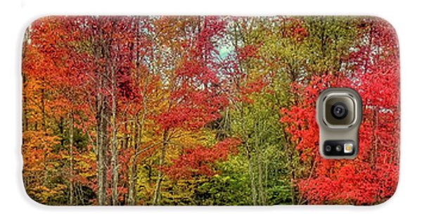 Galaxy S6 Case featuring the photograph Natures Fall Palette by David Patterson