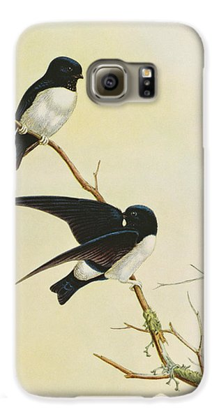 Nepal House Martin Galaxy S6 Case by John Gould