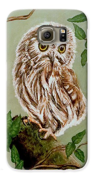 Northern Saw-whet Owl Galaxy S6 Case by Teresa Wing