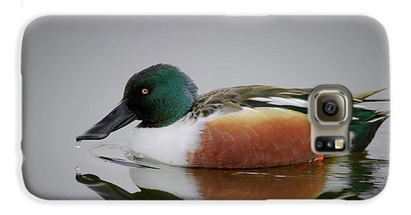 Northern Shoveler Galaxy S6 Case