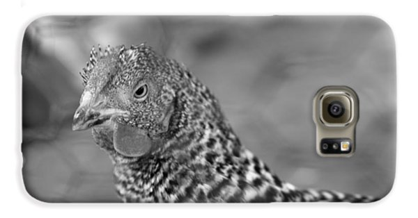 Galaxy S6 Case featuring the photograph Not Your Chicken Dinner by Lora Lee Chapman