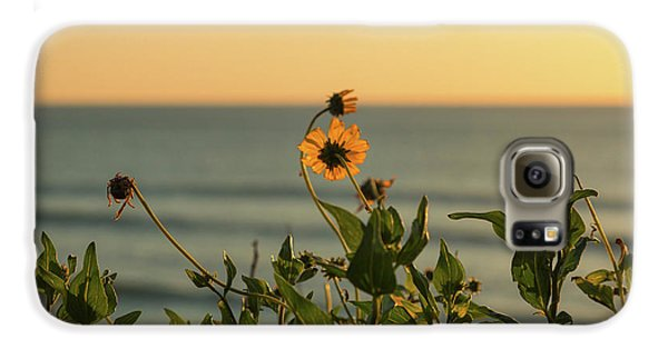 Galaxy S6 Case featuring the photograph Nothing Gold Can Stay by Ana V Ramirez