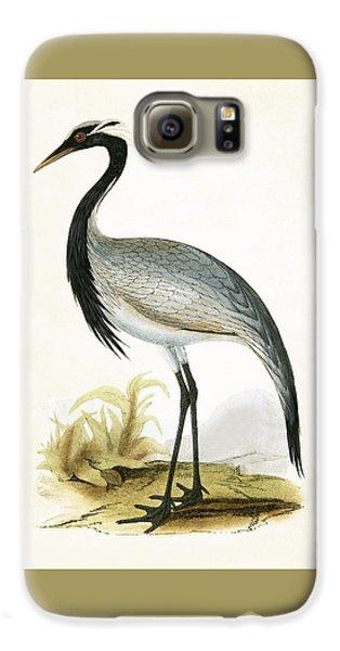 Numidian Crane Galaxy S6 Case