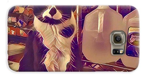 Nyc Bodega Cat Galaxy S6 Case