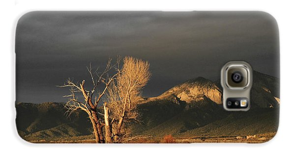 Sunset On The Old Cottonwood Galaxy S6 Case