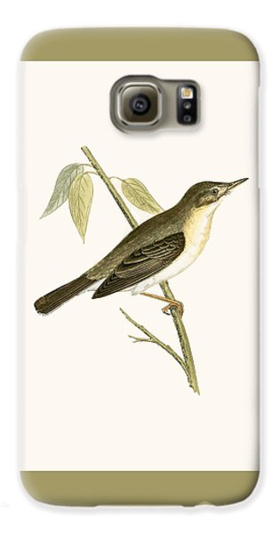 Olivaceous Warbler Galaxy S6 Case by English School