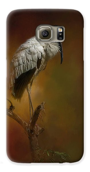 Stork Galaxy S6 Case - On The Fork by Marvin Spates