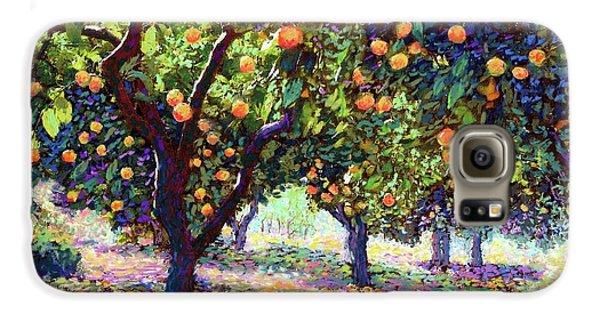 Orange Grove Of Citrus Fruit Trees Galaxy S6 Case