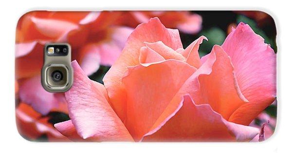 Orange-pink Roses  Galaxy S6 Case by Rona Black