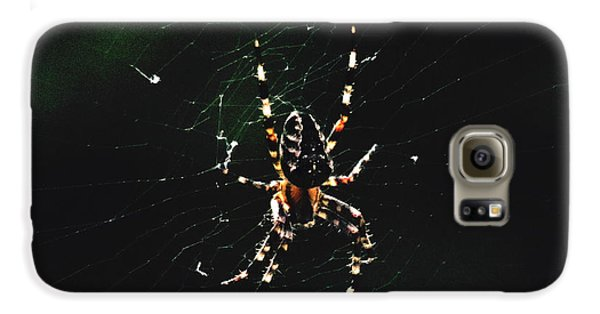 Orb Weaver Galaxy S6 Case