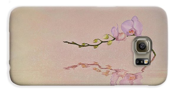 Orchid Blooms And Buds Galaxy S6 Case by Tom Mc Nemar