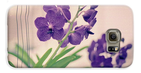 Galaxy S6 Case featuring the photograph Orchids In Purple  by Ana V Ramirez