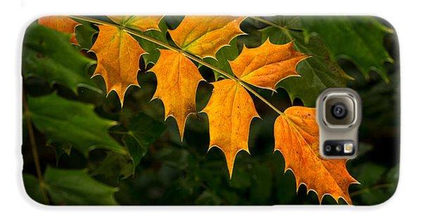 Oregon Grape Autumn Galaxy S6 Case