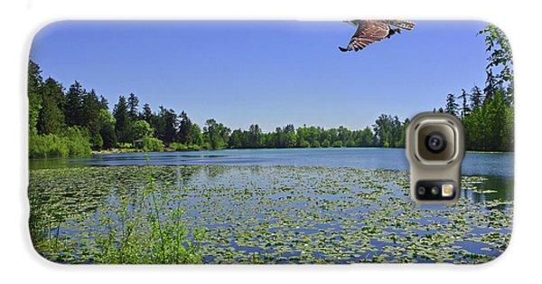 Osprey Fishing At Wapato Lake Galaxy S6 Case