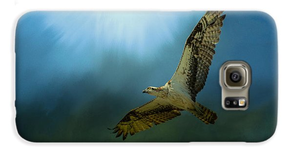 Osprey In The Evening Light Galaxy S6 Case by Jai Johnson