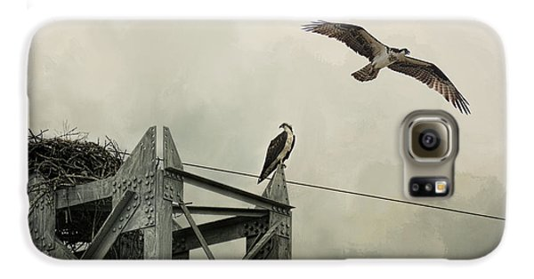 Ospreys At Pickwick Galaxy S6 Case by Jai Johnson
