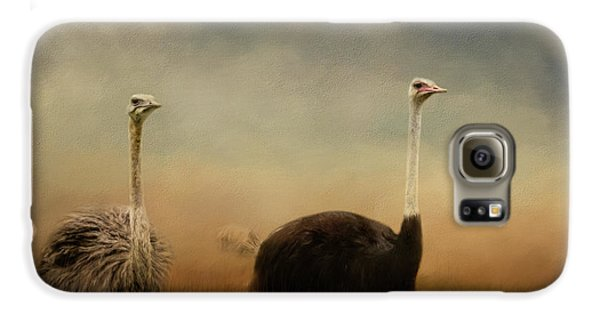 Ostrich Couple Galaxy S6 Case by Jai Johnson
