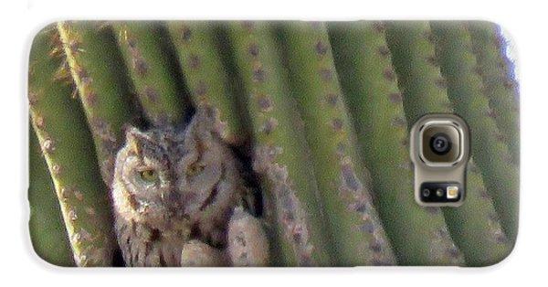 Owl In Cactus Burrow Galaxy S6 Case