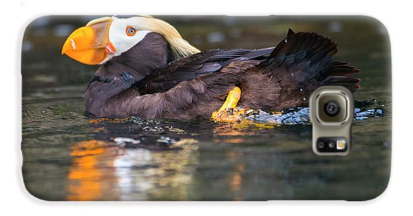 Puffin Galaxy S6 Case - Paddling Puffin by Mike Dawson