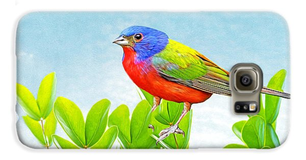 Bunting Galaxy S6 Case - Painted Bunting by Laura D Young