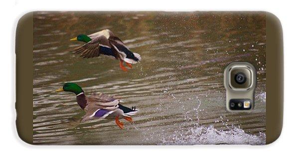 Pair Of Ducks Galaxy S6 Case