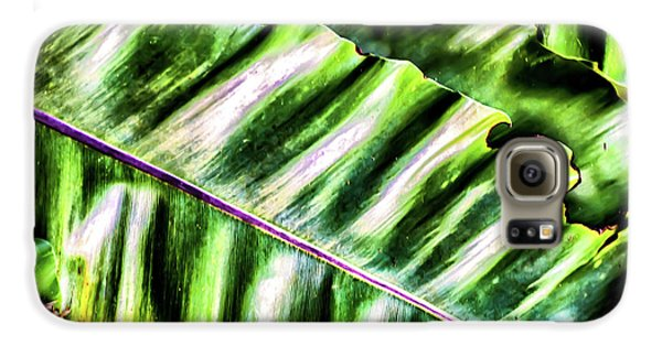 Palm Fronds Up Close Galaxy S6 Case