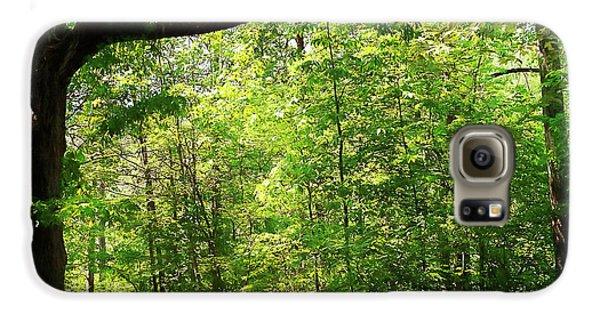 Paris Mountain State Park South Carolina Galaxy S6 Case