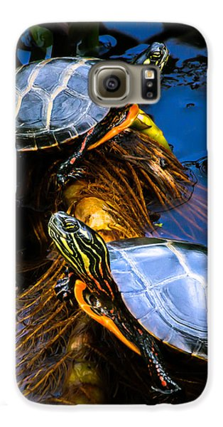 Passing The Day With A Friend Galaxy S6 Case by Bob Orsillo