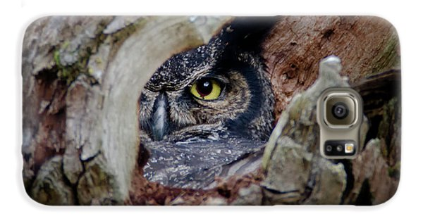 Peek A Boo Owl Galaxy S6 Case