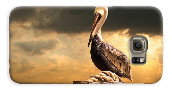 Pelican After A Storm Galaxy S6 Case