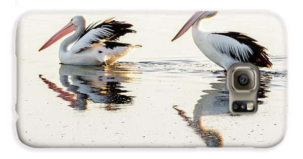 Pelicans At Dusk Galaxy S6 Case by Werner Padarin