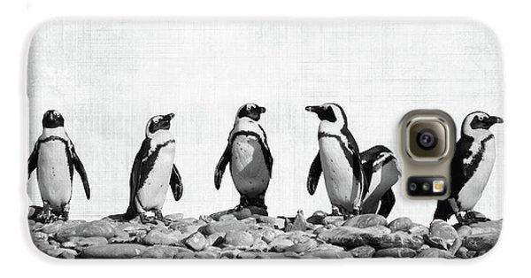 Penguin Galaxy S6 Case - Penguins by Delphimages Photo Creations