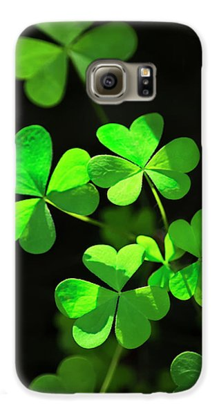 Perfect Green Shamrock Clovers Galaxy S6 Case