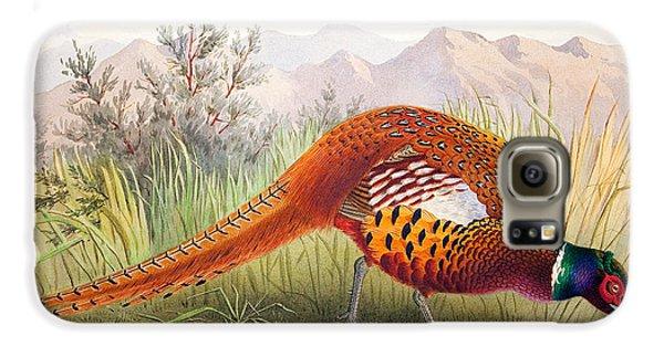 Pheasant Galaxy S6 Case