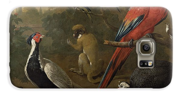 Pheasant Macaw Monkey Parrots And Tortoise  Galaxy S6 Case by Charles Collins