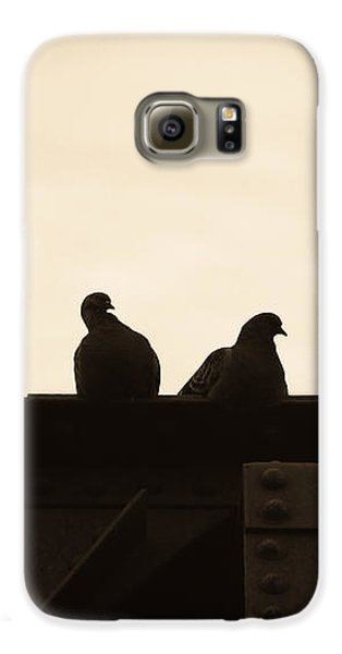 Pigeon Galaxy S6 Case - Pigeon And Steel by Bob Orsillo