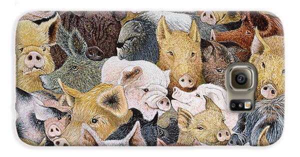 Pigs Galore Galaxy S6 Case by Pat Scott