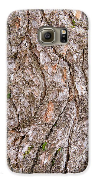 Pine Bark Abstract Galaxy S6 Case by Christina Rollo