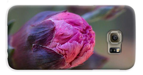 Pink Carnation Bud Close-up Galaxy S6 Case