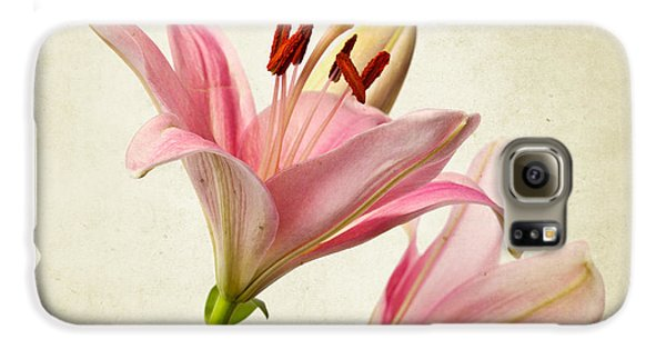 Lily Galaxy S6 Case - Pink Lilies by Nailia Schwarz
