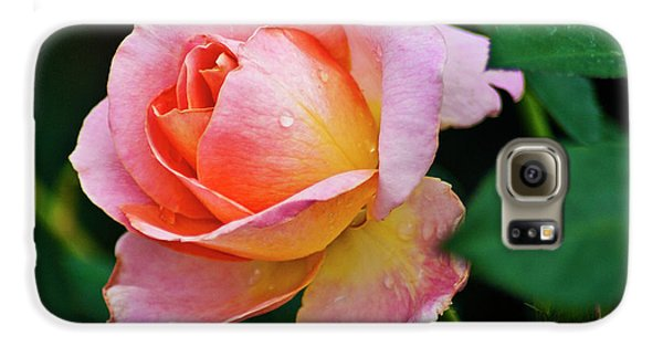 Galaxy S6 Case featuring the photograph Pink Rose by Bill Barber