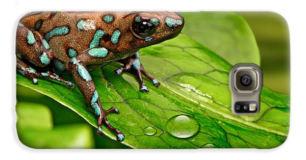 poison art frog Panama Galaxy S6 Case by Dirk Ercken